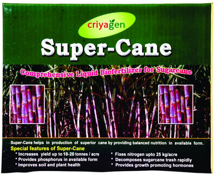 Super Cane Kit